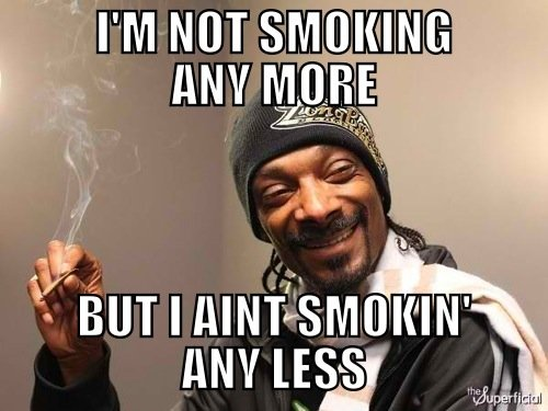 I used do drugs snoop meme archives how to roll the best joint in the world