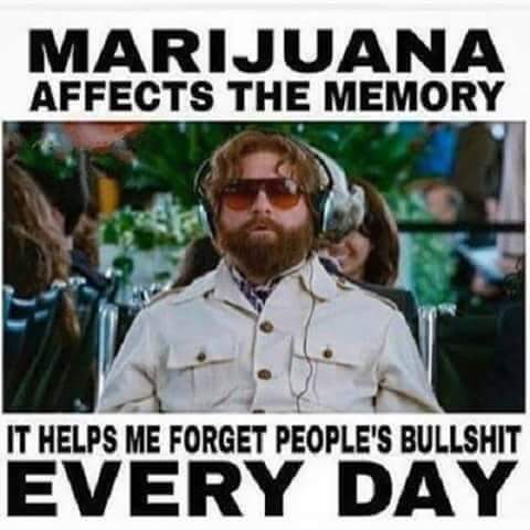 marijuana affects memory