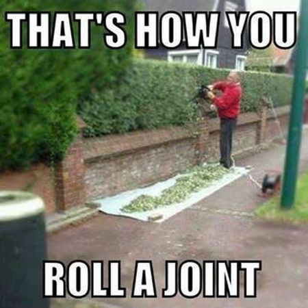 thats how you roll