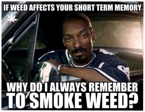 weed short term snoop meme archives how to roll the best joint in the world